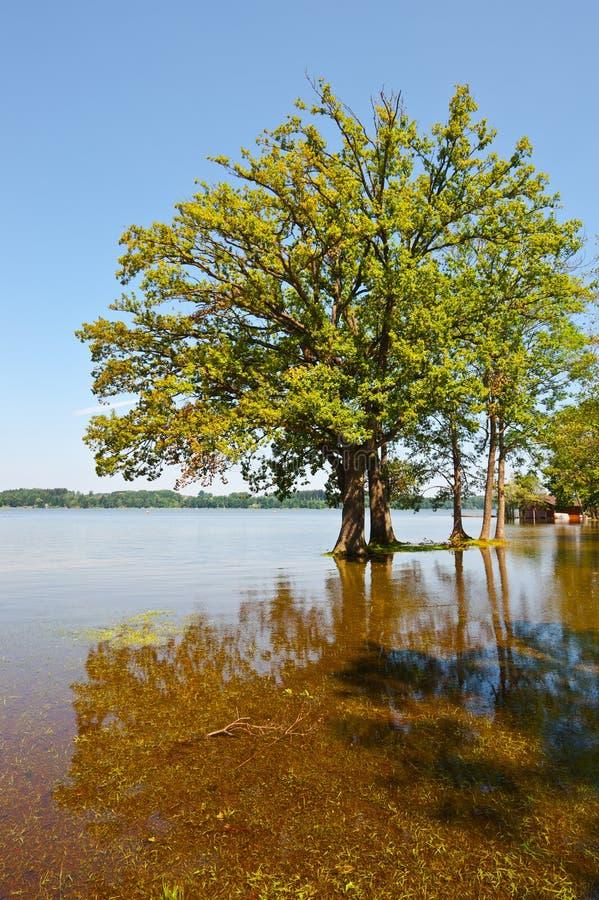 Download Flooding Stock Photos - Image: 28854013