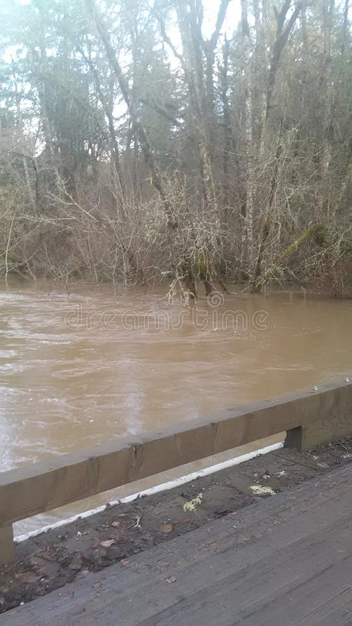flooding foto de stock royalty free