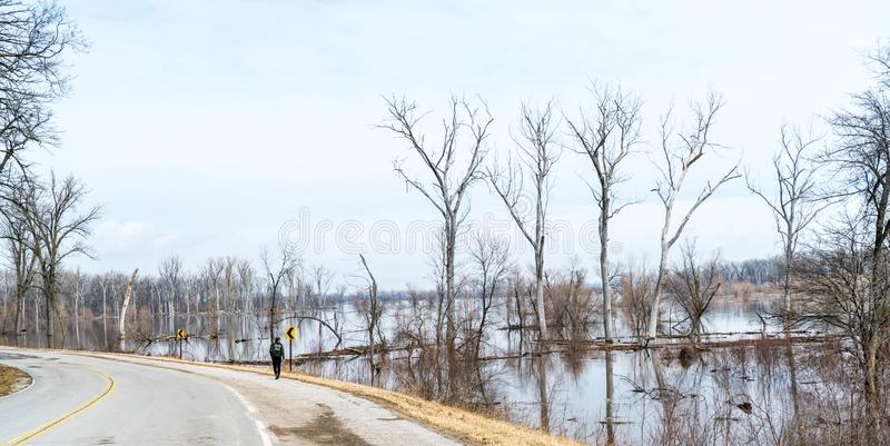 Flooding along the Missouri river. Person walking along the road near the flood waters of the Missouri river in Nebraska on March 17th 2019 stock images