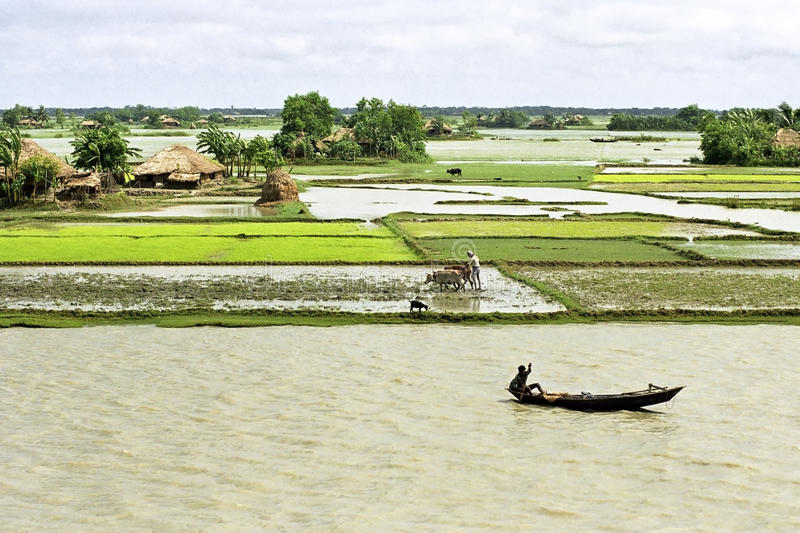 Flooding in the delta Bangladesh, climate changes. Bangladesh village on the island Charkajal, Bay, Gulf of Bengal: No country is so vulnerable to climate change royalty free stock images