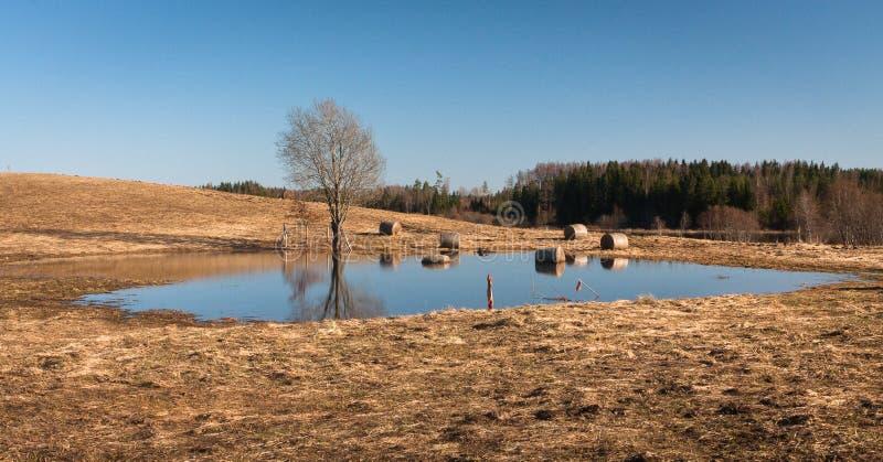 Flooding in latvia stock photography