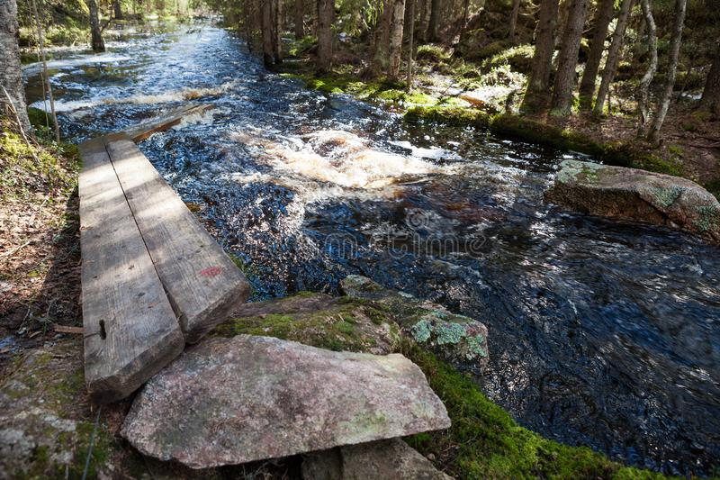 Flooding river and broken duckboards. In forest stock photos
