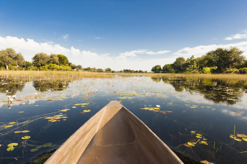 Dugout trip in Botswana. Canoe tour through flooded Okavango Delta, Botswana stock images