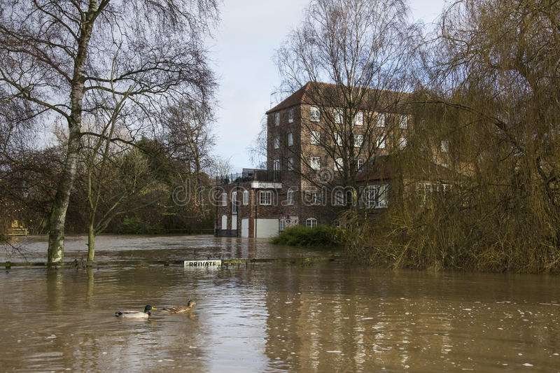 Flooding - Yorkshire - England. Flooding after the River Derwent burst its banks in the village of Stamford Bridge in North Yorkshire in northeast England stock image