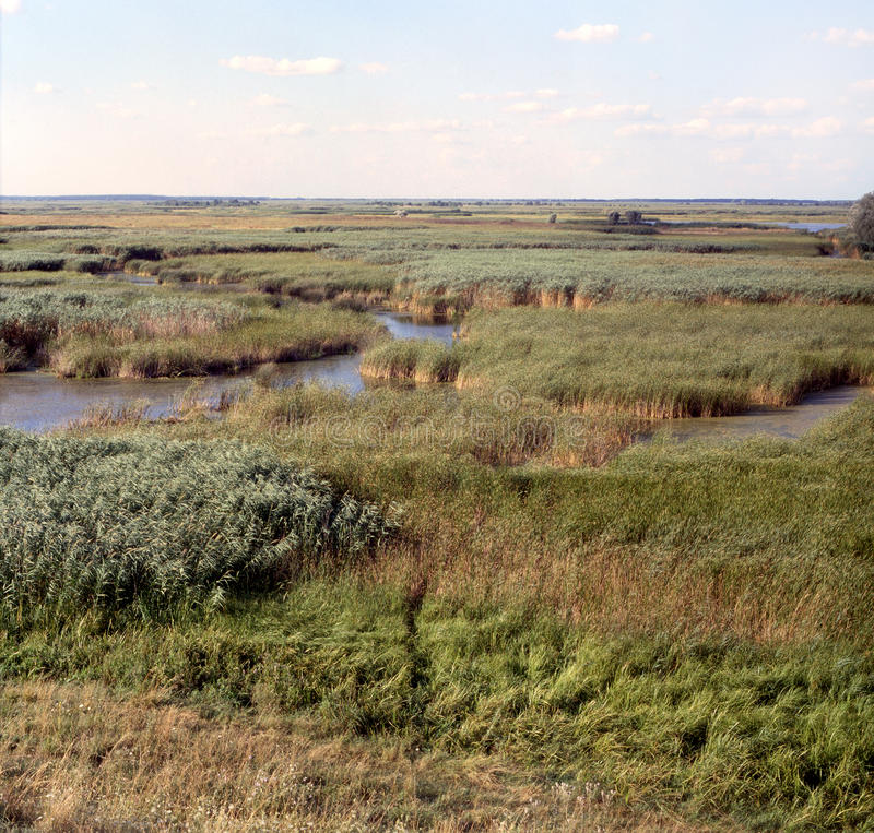 Free Floodplain Of The Sula Royalty Free Stock Images - 10753399
