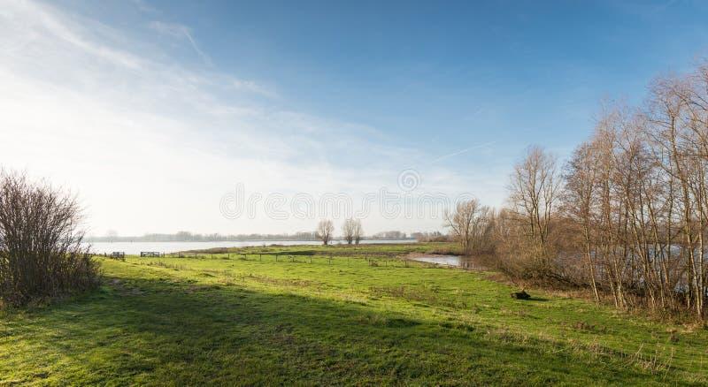 Floodplain szeroka rzeka w niskim ranku słońcu zdjęcie stock