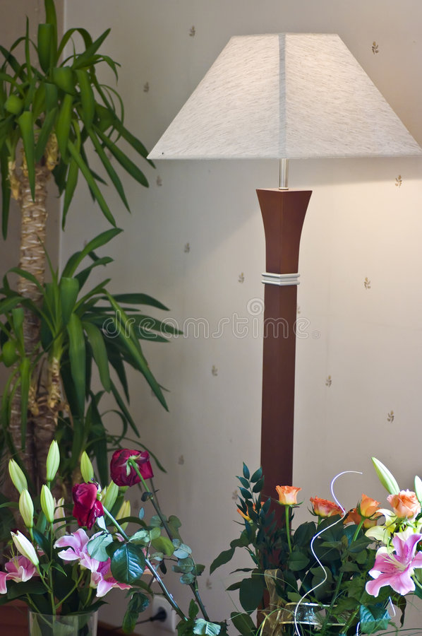 Floor Lamp And Flowers Royalty Free Stock Photos