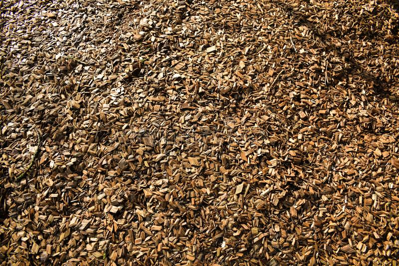 Wood Chips Flakes Chunks Pieces Brown Gold Sunshine Decoration P. A floor of wooden flakes in a playground which can be used as a cool background royalty free stock photography