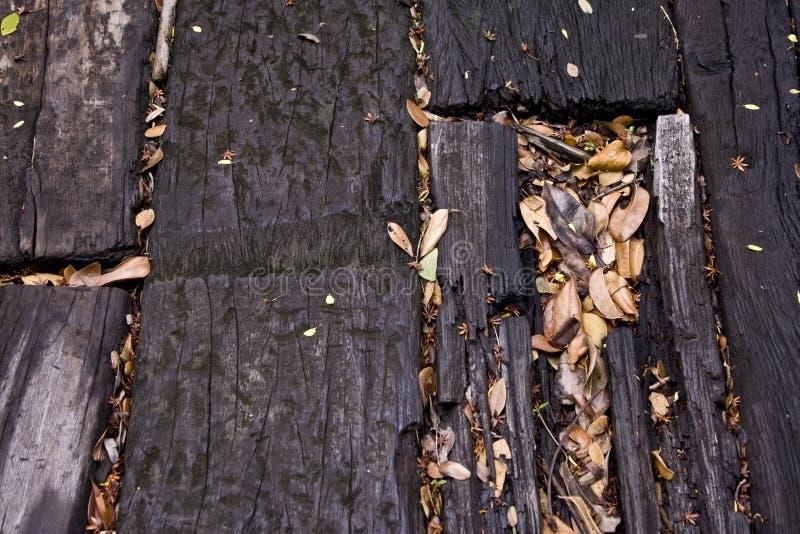 floorboards liść obrazy stock