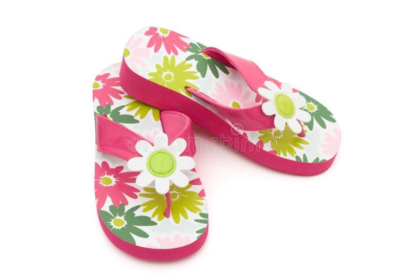Flops Flip цветка стоковое изображение