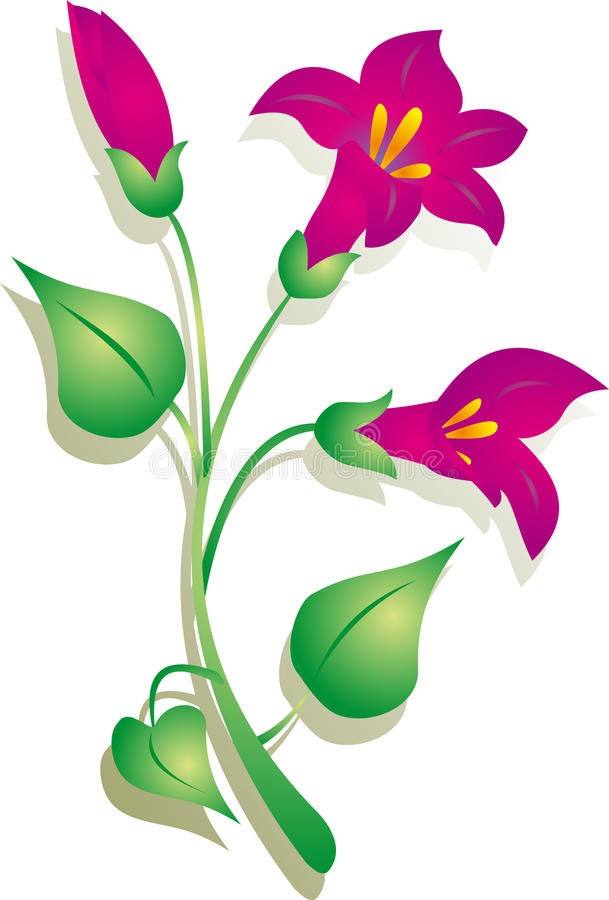 Flor   ilustração royalty free