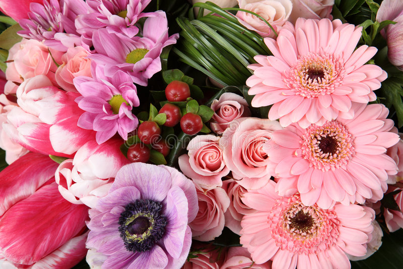 Flor 3 fotos de stock
