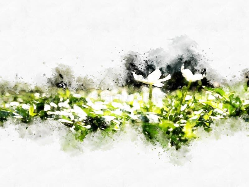 Flor abstracta que florece en fondo colorido de la pintura de la acuarela stock de ilustración