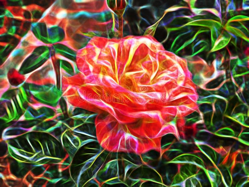 Flor abstrata bonita do fractal imagem de stock royalty free