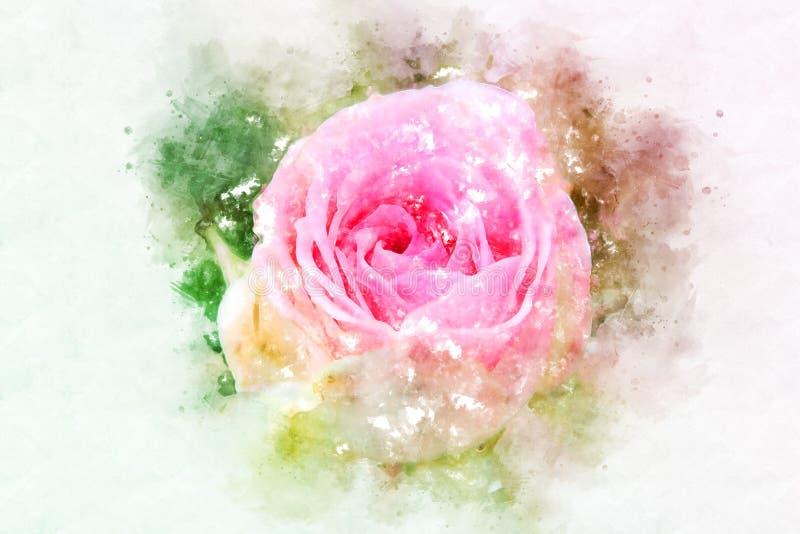 Flor abstrata que floresce no fundo colorido da pintura da aquarela ilustração royalty free