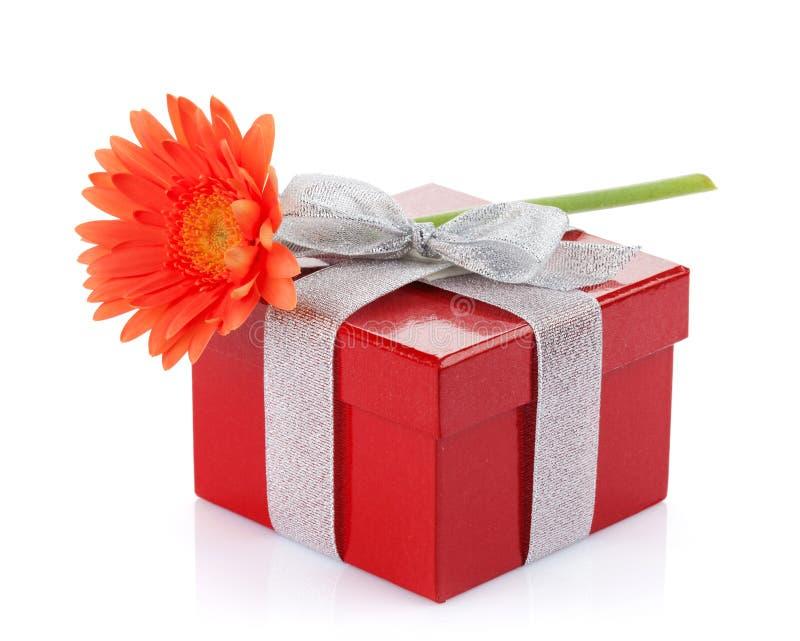 Flor alaranjada do gerbera sobre a caixa de presente imagens de stock