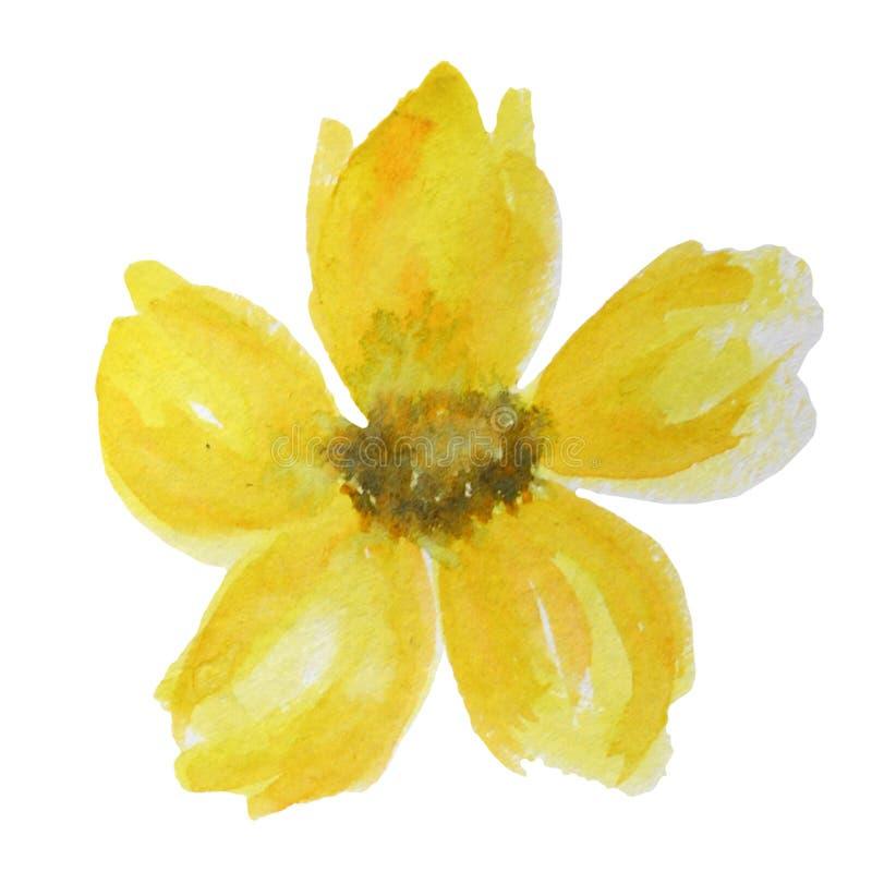 Flor amarela brilhante bonita da aquarela Isolado no fundo branco fotografia de stock royalty free