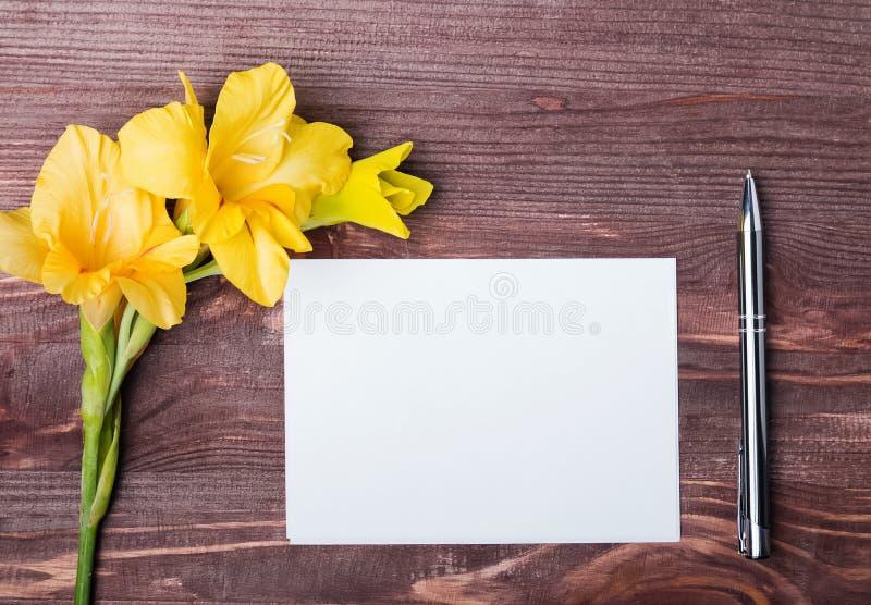 Flor amarela, folha de papel vazia e pena na tabela de madeira imagens de stock