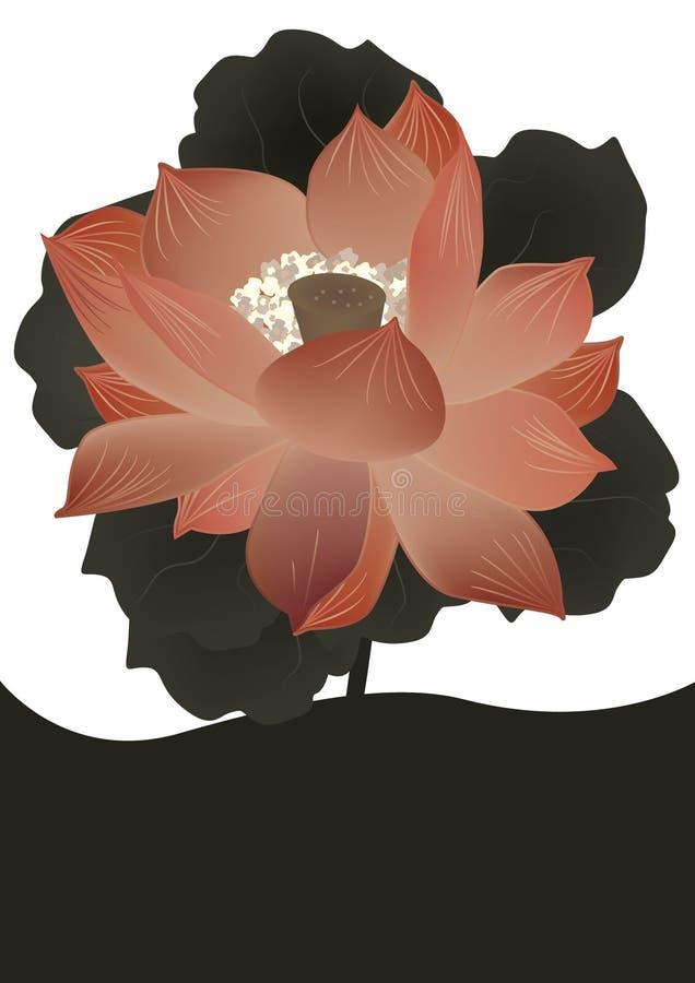 Flor antiga Card_eps dos lótus ilustração do vetor