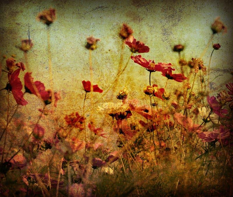 Flor antiquado fotografia de stock royalty free