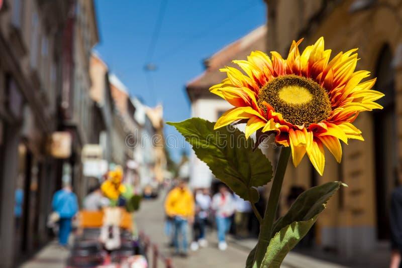 A flor artificial do sol em um restaurante espanhol situado em uma rua bonita na cidade de Zagreb chamou o ulica de Radiceva fotos de stock