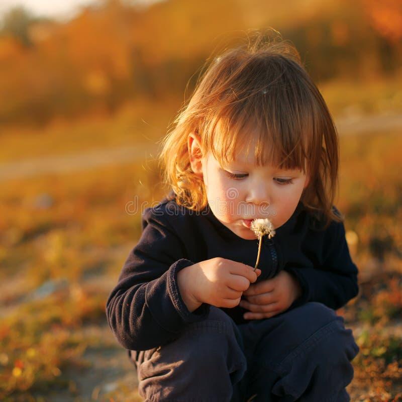 Flor ausente de sopro do dente-de-leão da criança bonita imagens de stock royalty free