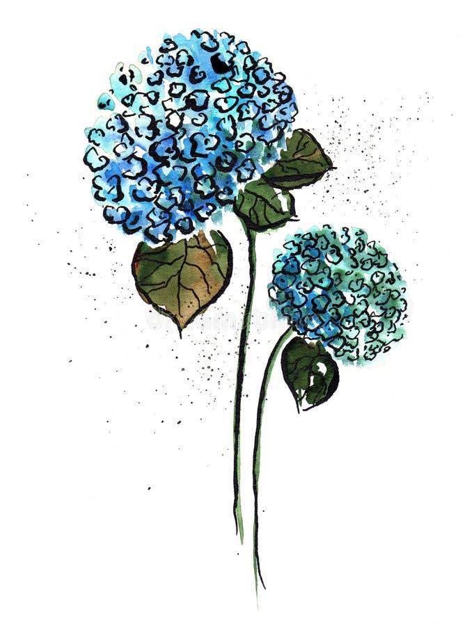 Flor azul ilustração do vetor