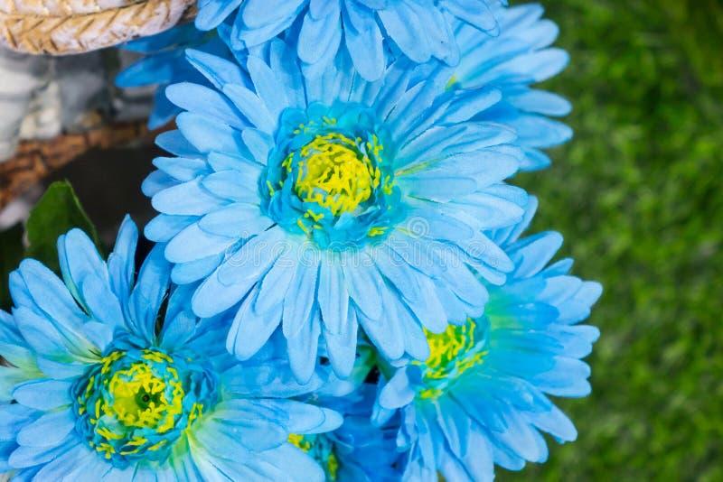 Flor azul de la falsificación del Gerbera foto de archivo libre de regalías