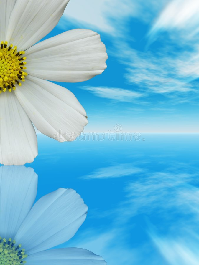 Flor blanca stock de ilustración