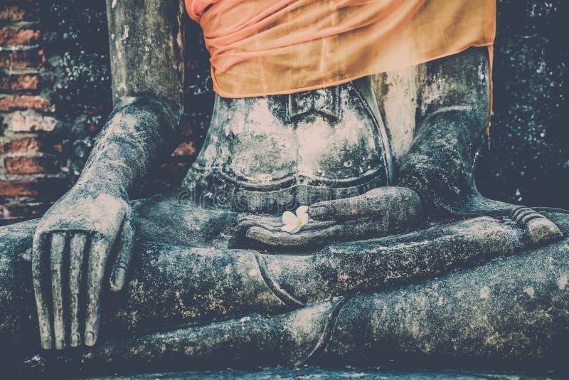 Flor blanca en la mano pública de Buda, Ayuthaya, Tailandia imagen de archivo