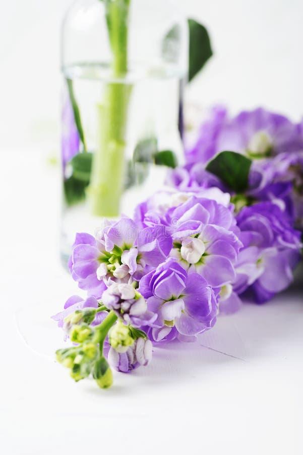 Flor bonita da mola na tabela branca foto de stock
