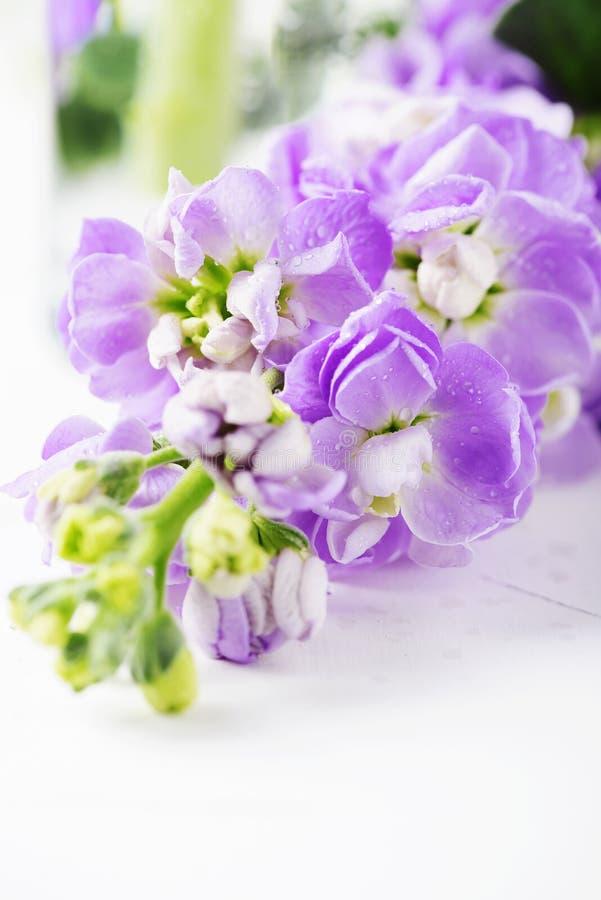 Flor bonita da mola na tabela branca fotografia de stock royalty free