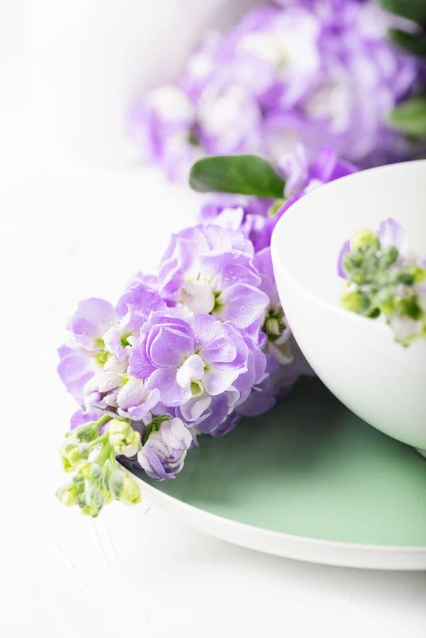Flor bonita da mola na tabela branca imagens de stock
