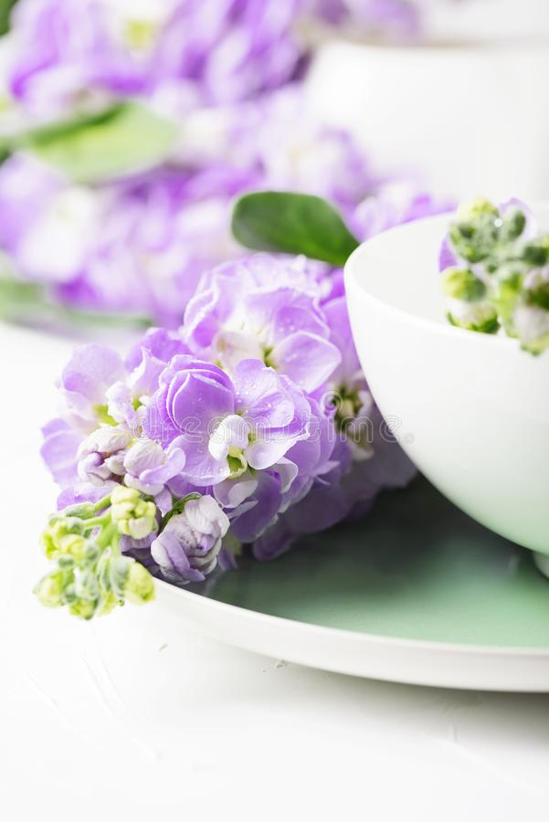 Flor bonita da mola na tabela branca fotos de stock royalty free