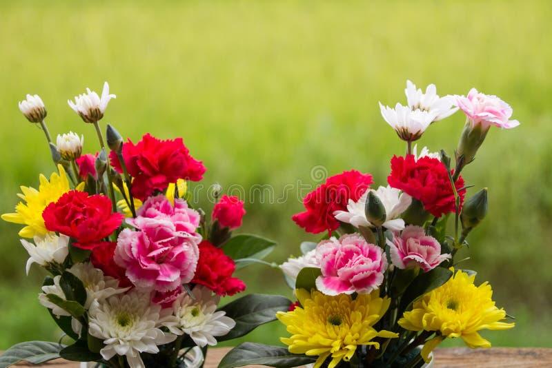 flor bonita do ramalhete com fundo verde foto de stock