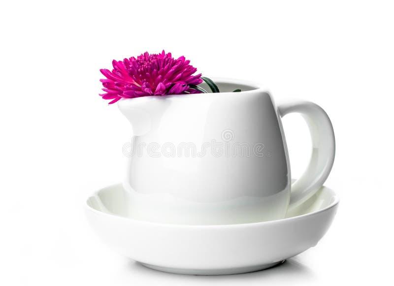 Flor bonita em um barco de molho para o leite em um fundo branco imagem de stock royalty free