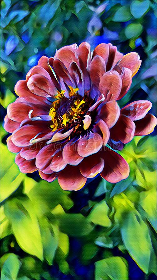 Flor bonita na jarda de minha casa no verão fotos de stock royalty free