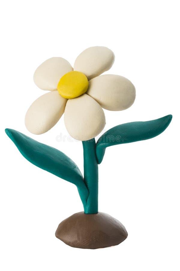 Flor branca da massa de modelar com as folhas que crescem na terra imagem de stock royalty free