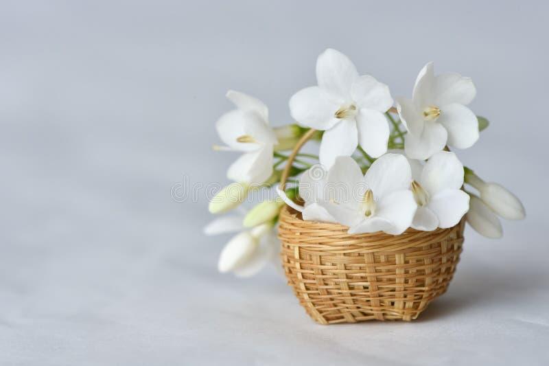 Flor branca na cesta de bambu minúscula fotos de stock royalty free