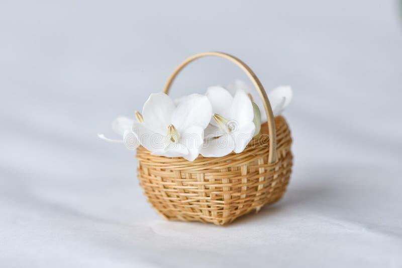 Flor branca na cesta de bambu minúscula fotos de stock
