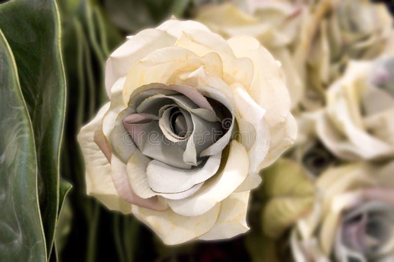 A flor branca Pinkish falsificada (coleção falsificada da flor) imagens de stock