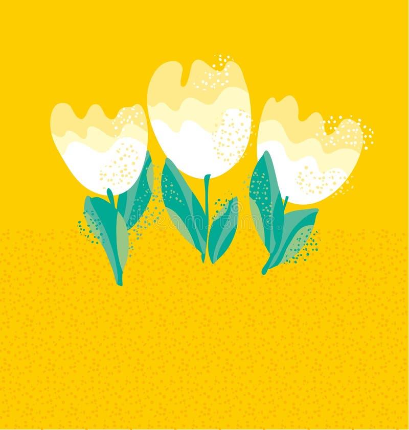 Flor branca simples da tulipa ilustração stock
