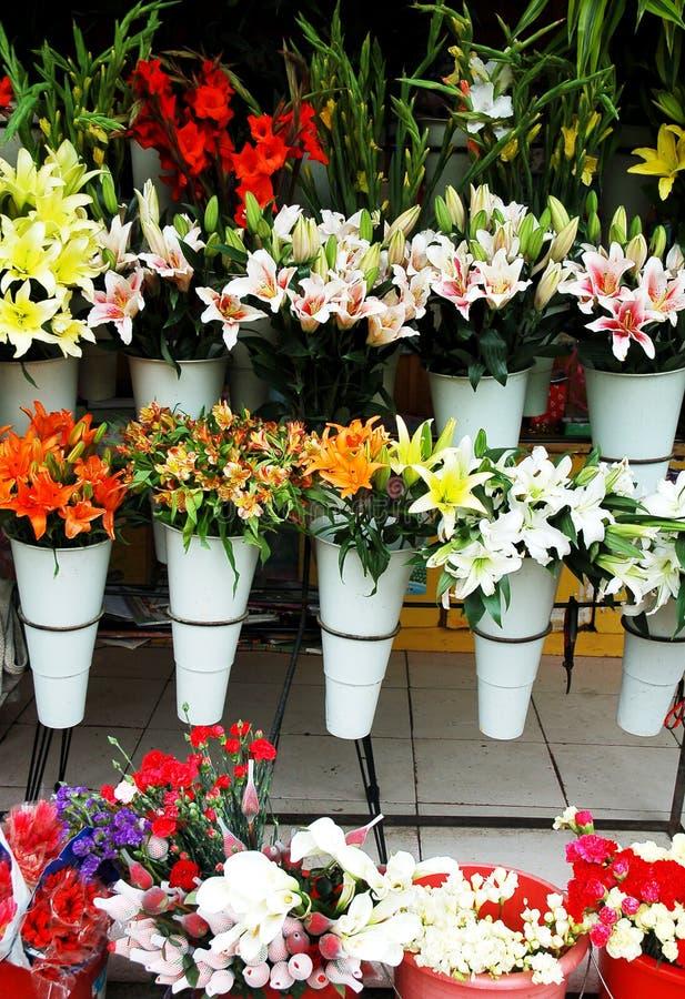 Flor chinesa foto de stock royalty free