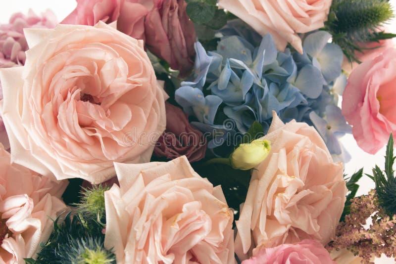 Flor color de rosa aromática del vintage y cierre natural de la hoja para arriba foto de archivo