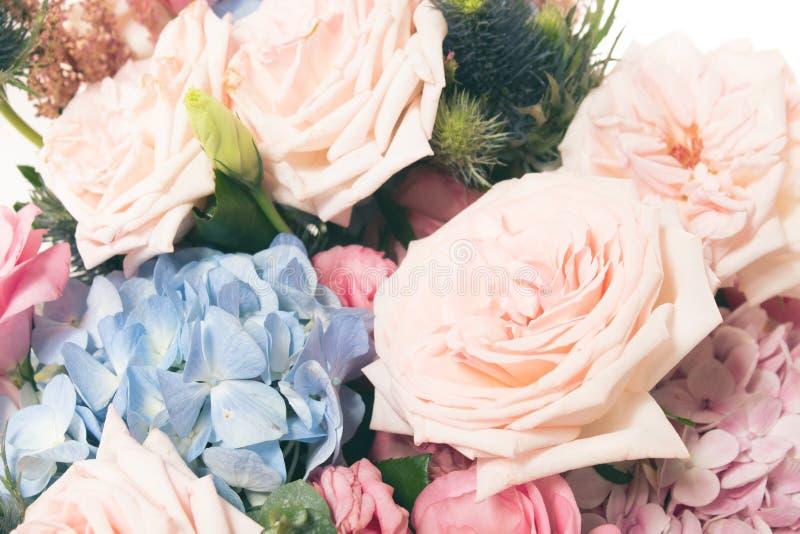 flor color de rosa aromática del vintage y hoja natural imagen de archivo