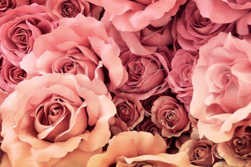 Flor color de rosa de la tela con efecto retro del filtro fotografía de archivo
