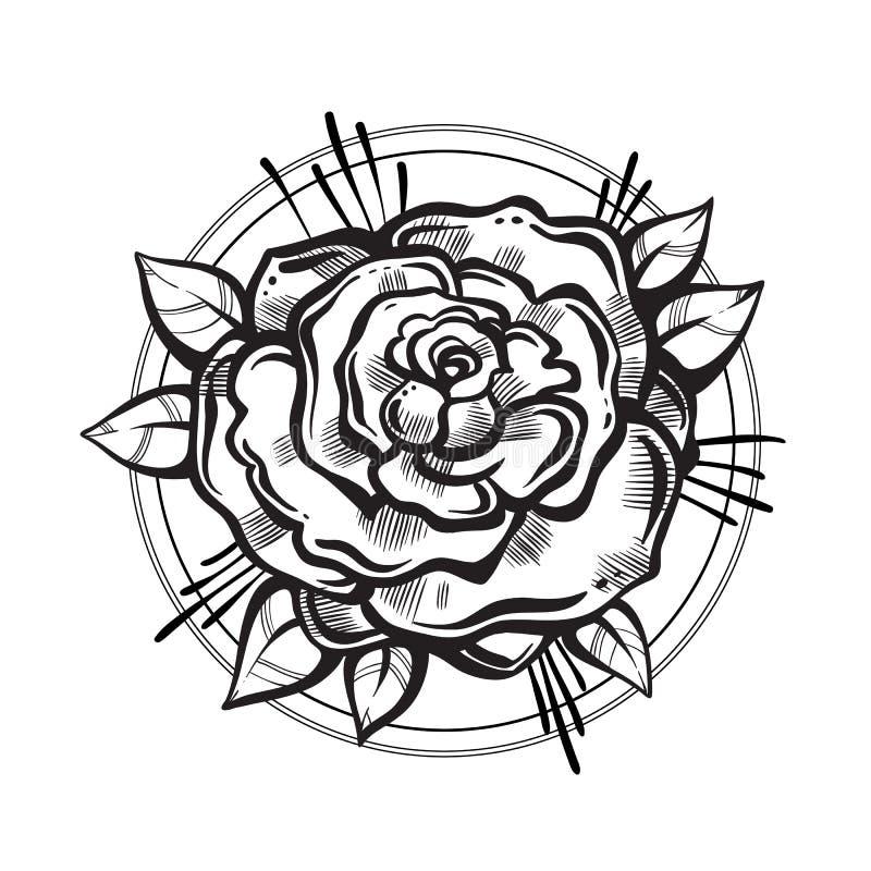 Flor color de rosa hermosa a mano Arte del tatuaje Composición gráfica del vintage Ilustración del vector aislada Camisetas, impr ilustración del vector