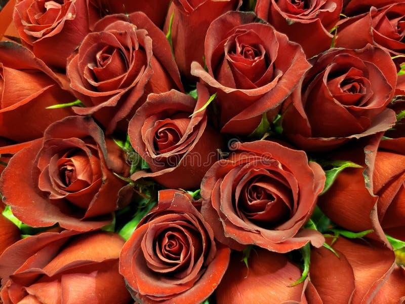 flor color de rosa roja en un ramo floral para el regalo del amor, del fondo y de la textura fotos de archivo
