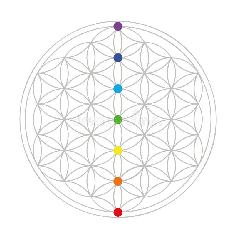 Flor colorida da geometria da vida ilustração do vetor