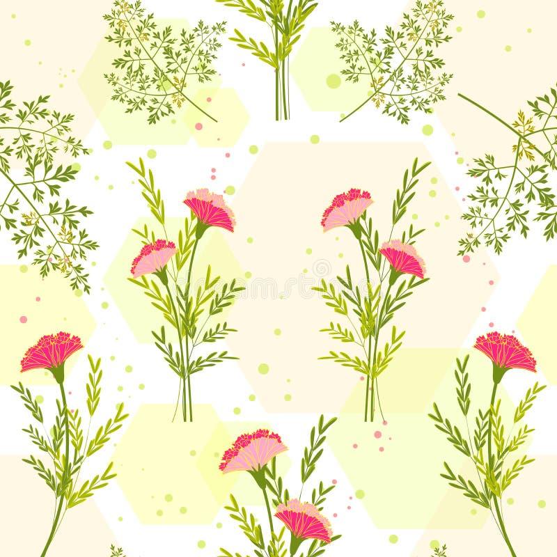 Flor colorida da primavera com Herb Background ilustração royalty free